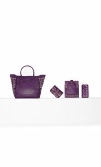 A fare la differenza nella collezione di borse Pinko autunno inverno 2013  2014 sono i dettagli  oltre al classico trapuntato vediamo decori 3D a6100f015b8