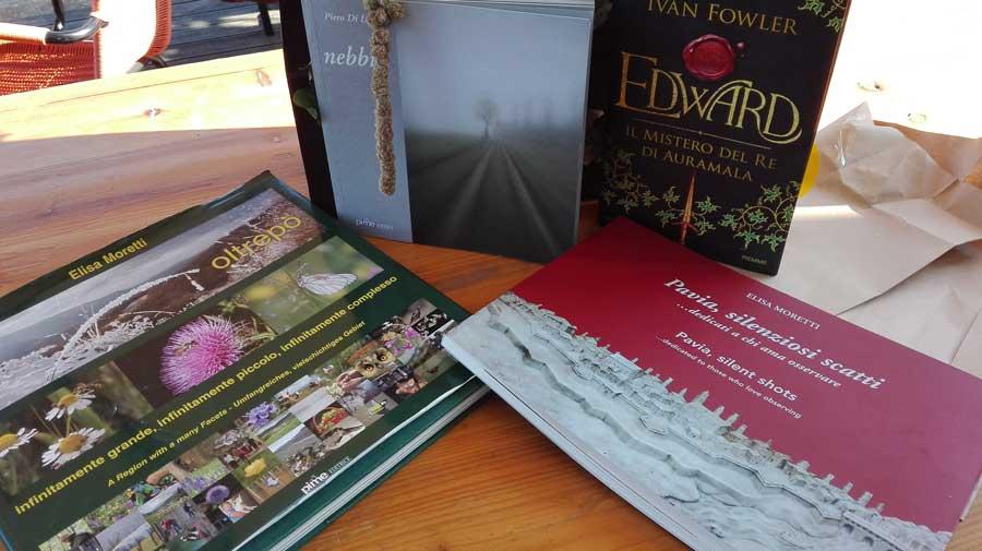 il girasole di travacò siccomario vacanze pavesi by i viaggi di tels libri