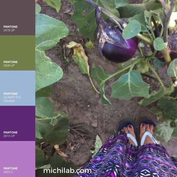 Tendenze colori autunno 2018 michilab