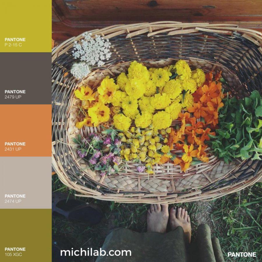 Tendenze colori autunno 2018 palette calda michilab